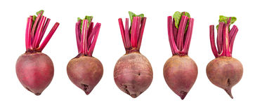 Beetroot. Isolated on white background stock photos