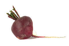 Beetroot isolated on white Royalty Free Stock Images