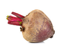 Beetroot isolated on white Stock Photography