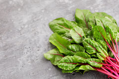 Beetroot leaves Stock Photo