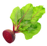 Beetroot with leaves Stock Photo