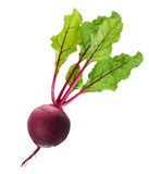 Beetroot with leaves isolated on white Stock Photography