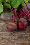 Beetroot with leaves Royalty Free Stock Images