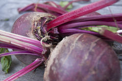 Beetroot. RAW beetroots with leaf. Beets Royalty Free Stock Photo