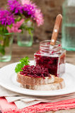 Beetroot Relish Preserves on Rye Toast. Marinated Beetroot Relish Preserves on Rye Toast, copy space for your text Royalty Free Stock Photo