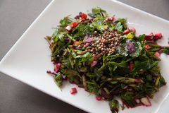 Beetroot salad with herbs Royalty Free Stock Image