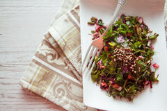 Beetroot salad with herbs Royalty Free Stock Photography
