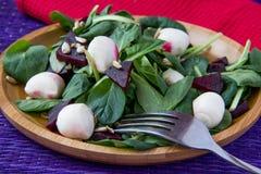 Beetroot salad with mozzarella Stock Photo
