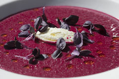 Beetroot Soup (Borscht) Garnished with Purple Basi Stock Images