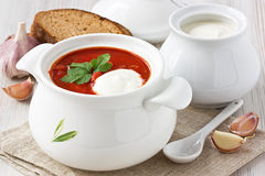 Beetroot soup borscht Stock Images