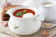 Beetroot soup borscht Stock Image