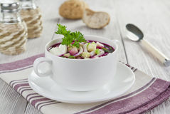Beetroot soup with squid, cucumber and apple Royalty Free Stock Photos