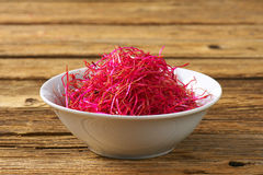 Beetroot sprouts Stock Photography