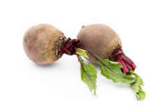 Beetroot  on the white background. Royalty Free Stock Photography