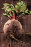 Beetroot on wood Stock Images