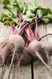 Beetroot on wooden background Royalty Free Stock Images
