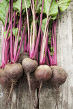 Beetroot on wooden background. Once wrecked red beet burned wooden background Royalty Free Stock Photo