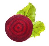 Beetroot z liśćmi Obraz Royalty Free