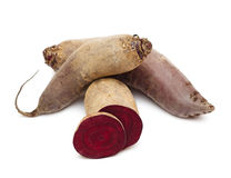 Beetroots royalty free stock photo