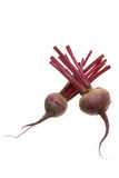 Beetroots. Fresh Whole Beetroots on White Background Royalty Free Stock Photos