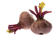 Beetroots Isolated Royalty Free Stock Image