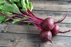 Free Beets Stock Photos - 131190443