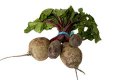 Beets or Beetroot Royalty Free Stock Images