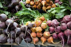 Beets Stock Photos