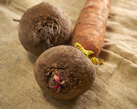 Beets and carrots. On a fabric background Royalty Free Stock Photography