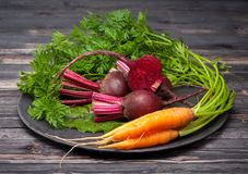Beets and carrots Royalty Free Stock Photography