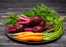 Beets and carrots Stock Photography