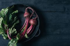 Beets with green tops in round metal pan on dark black wooden background, fresh red beetroot on backdrop kitchen table top view royalty free stock image
