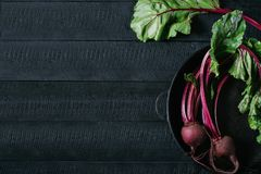 Beets with green tops in round metal pan on dark black wooden background, fresh red beetroot on backdrop kitchen table top view. Healthy vitamin vegan food royalty free stock photography