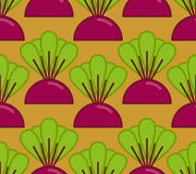 Beets grow seamless pattern. Vegetable on garden background Royalty Free Stock Photography