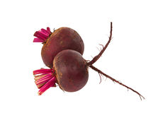 Beets isolated Royalty Free Stock Photos