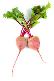Beets with leaves Royalty Free Stock Images