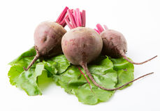 Beets with leaves Stock Photo