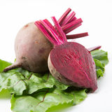 Beets with leaves Stock Image