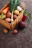 Beets, onions, garlic, dill, potatoes, carrots on an old wooden background. Vegetables in a basket: beets, onions, garlic, dill, potatoes, carrots on an old Royalty Free Stock Photos