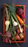 Beets, onions, garlic, dill, potatoes, carrots on an old wooden background. Vegetables in a basket: beets, onions, garlic, dill, potatoes, carrots on an old Stock Photos
