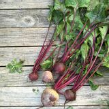 Beets with tops. On old wooden background Royalty Free Stock Photos