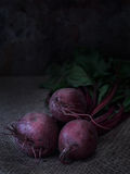 Beets with tops on sacking, Low key. Three fresh beets with tops on sacking close-up low key royalty free stock image