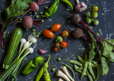 Beets, zucchini, peppers, onion, garlic, green beans, beans, tomatoes, parsnips, parsley - fresh vegetables on a dark background. Royalty Free Stock Photos