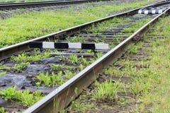 Befördern Sie mit den alten Lagerschwellen mit dem Zug, die mit grünem Gras überwältigt werden Industrieller Konzepthintergrund E Stockfoto