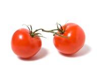 Befestigen Sie die Tomate, die auf weißem Hintergrund getrennt wird stockfotos