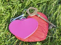 Befestigen Sie mit zwei Herzen ein Symbol der Liebe auf dem Grashintergrund Stockbilder