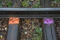 Befestigungen befördern zu den Lagerschwellen auf der alten Eisenbahn mit der Eisenbahn, die in der Leuchtorange und in den purpu lizenzfreies stockbild