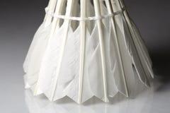 Befjädrad vit fjäderboll Royaltyfri Foto