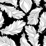 Befjädrar seamless mönstrar Arkivfoto