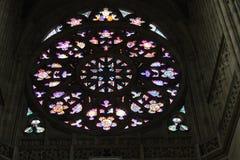 befläckt exponeringsglas Royaltyfri Foto